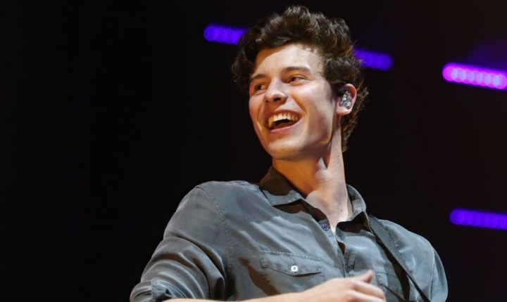 Hear Shawn Mendes' Raw New Song 'In My Blood'