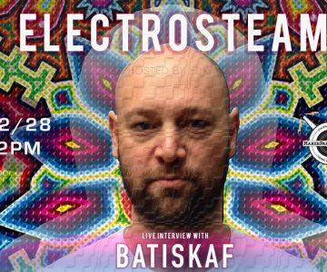 Electrosteam #26 Interview with Batiskaf 12.28.2018 (part 2 of 2)